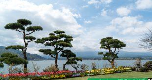 วิวสวยๆ บริเวณ Shuhoukaku Kogetsu