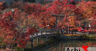 Day 2 : สบายๆ ที่โอซาก้า ดูใบไม้เปลี่ยนสี | วัดเอคันโด - วัดนันเซนจิ