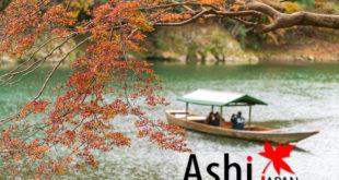 Day 3 : สบายๆ ที่โอซาก้า ดูใบไม้เปลี่ยนสี | Arashiyama - Kameyama Park - Jojakkoji Temple