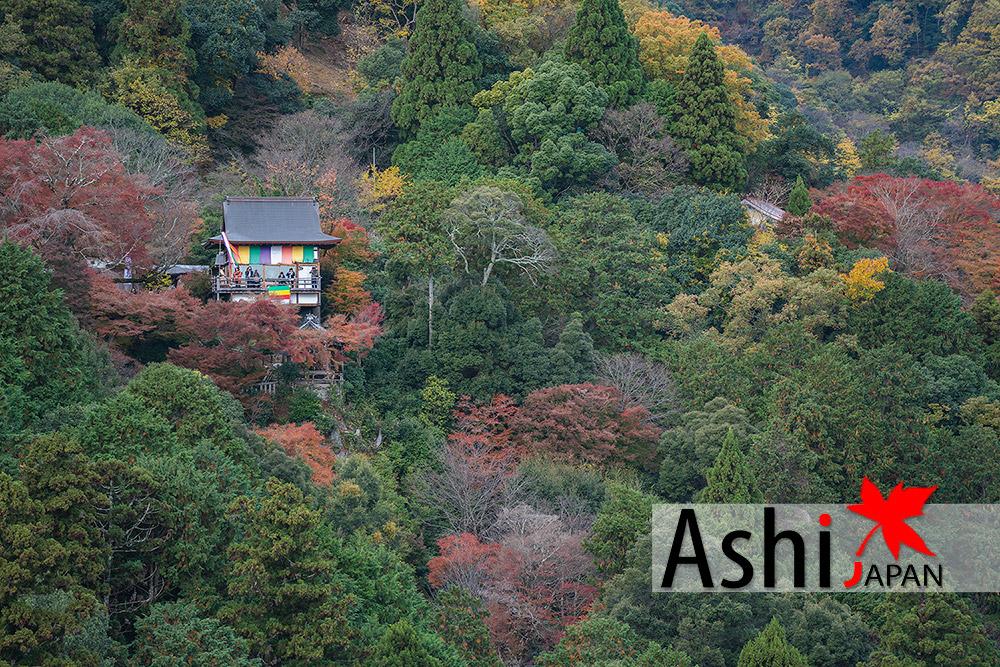 จุดชมวิวบน Kameyama Park