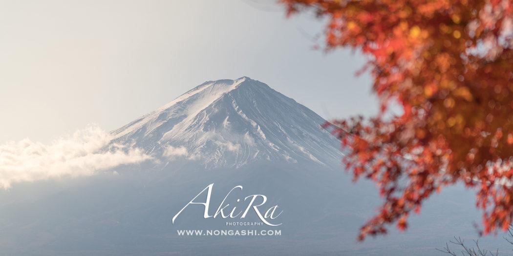 ใบไม้เปลี่ยนสีกับภูเขาไฟฟูจิ